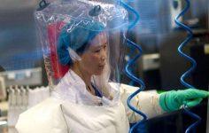 'Yarasa kadın'dan tüm dünyaya uyarı: Koronavirüs, buz dağının yalnızca görünen yüzü